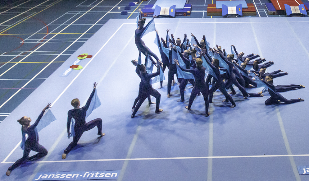 Try-out Wereld Gymnaestrada
